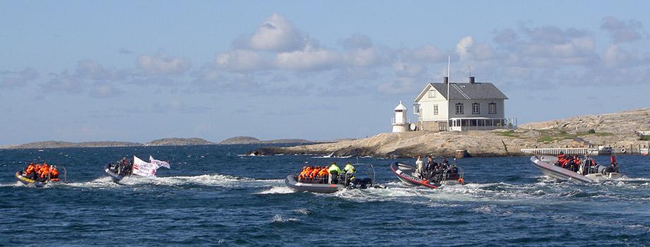 rib båtar hav hus ö