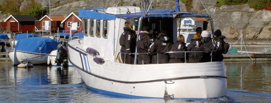 hummerfiske båt folk