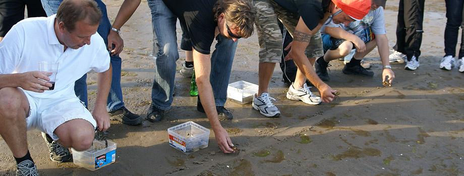 lekar på strand